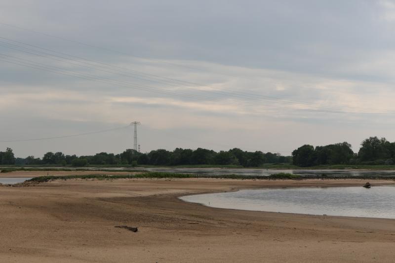 Elbe pur